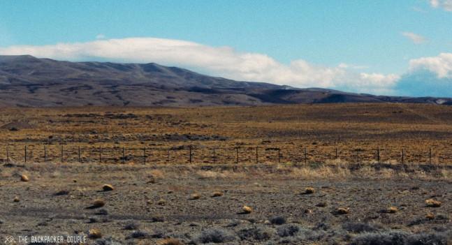 stepo-patagonico